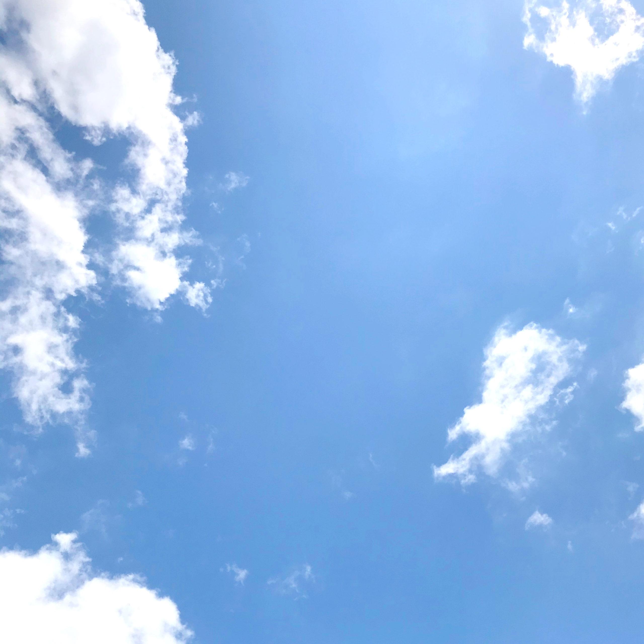 空は穏やかなのに・・・